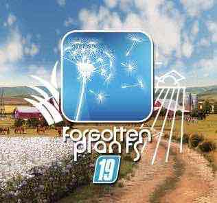 Forgotten Plants – Grass / Acre V2.2.0 Mod for Farming Simulator 2019 (FS19)